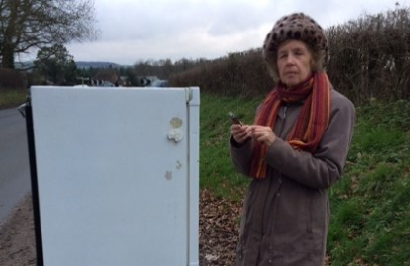Patricia Stallard getting tough on fly tipping