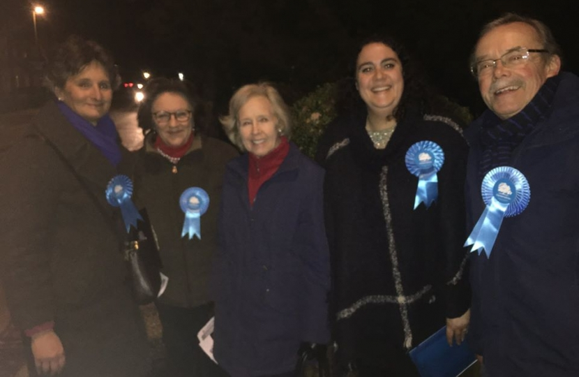 Flick canvassing in Denmead